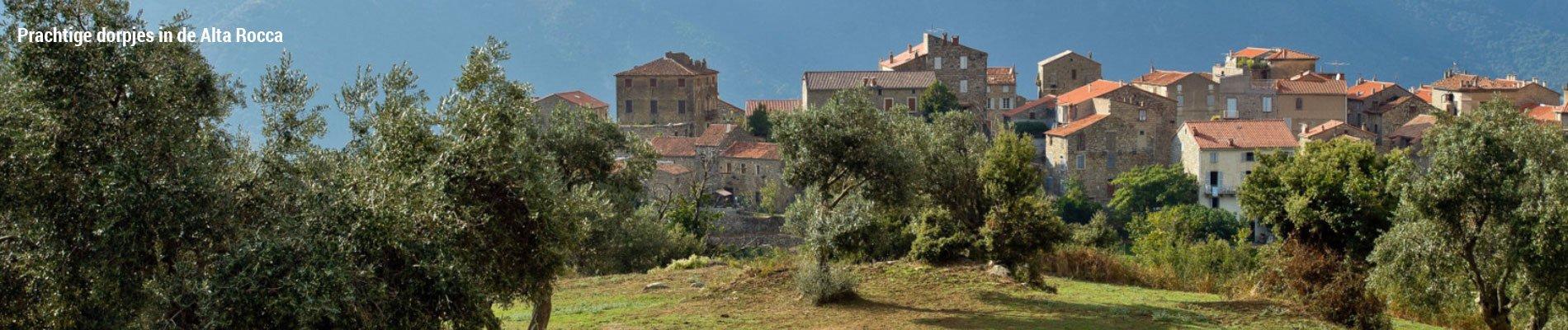 hotel-campo-dell-oro-ajaccio-corsica