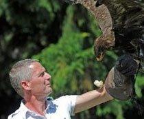 michel leijen adelaar